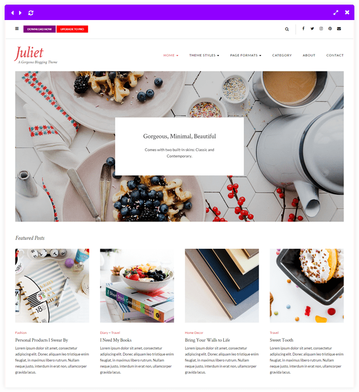 Juliet - Simple Elegant Lifestyle WordPress Theme