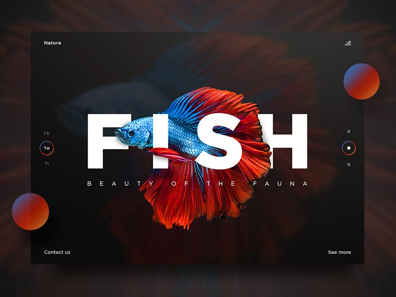 Fish UI