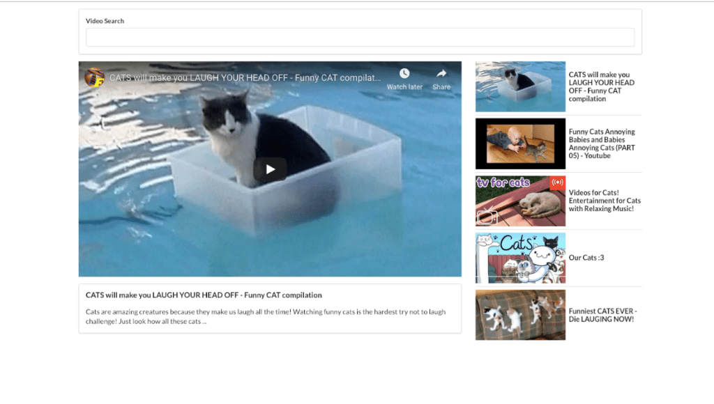 Simple youtube video player