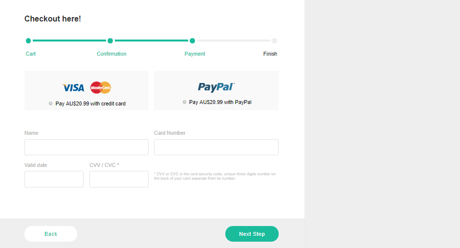 checkout panel example