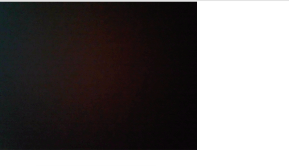 Webcam image Example with javascript