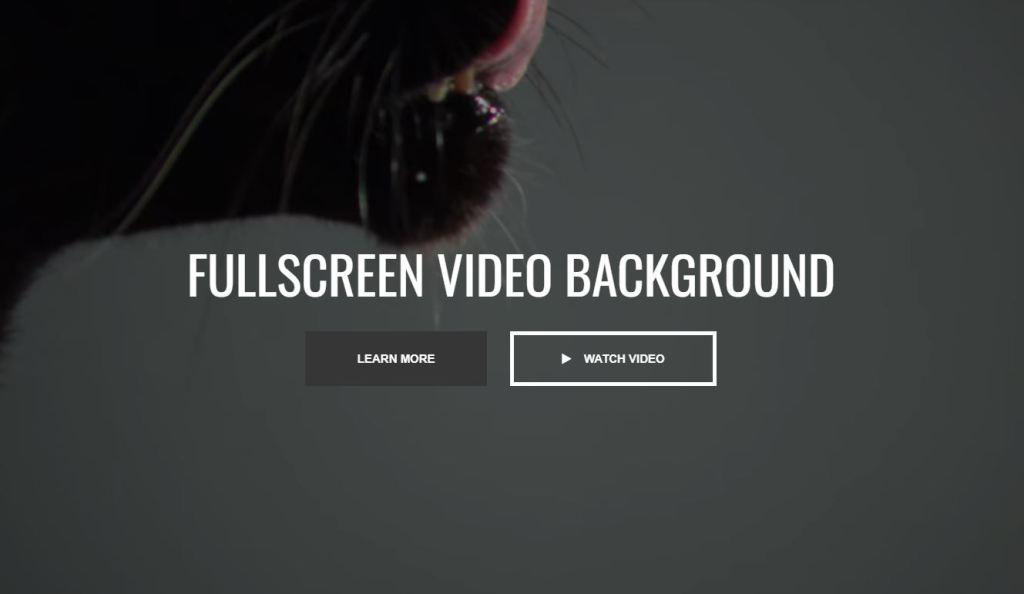 fullscreen vid background