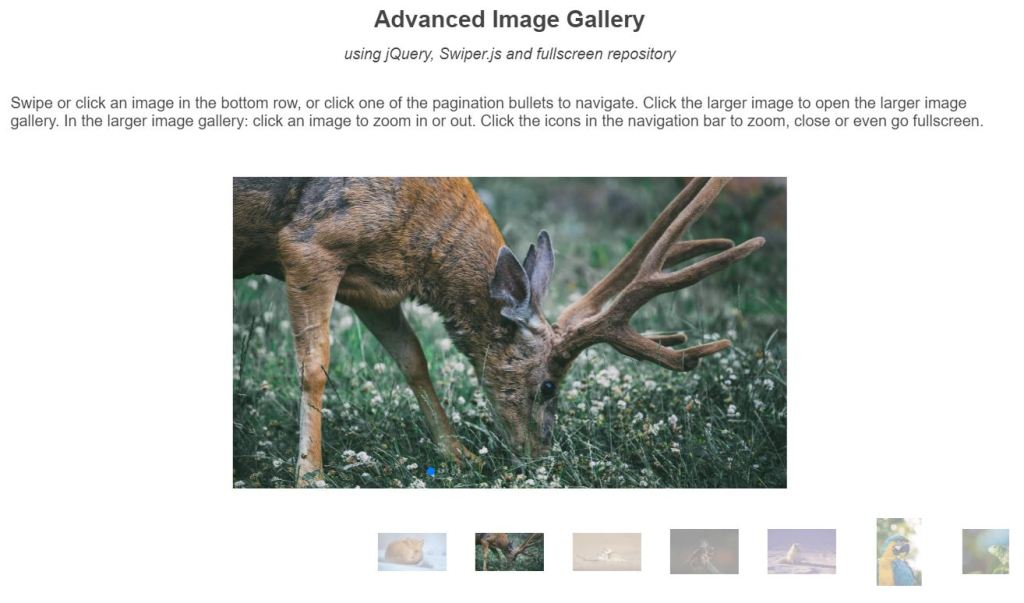 advanced image gallery