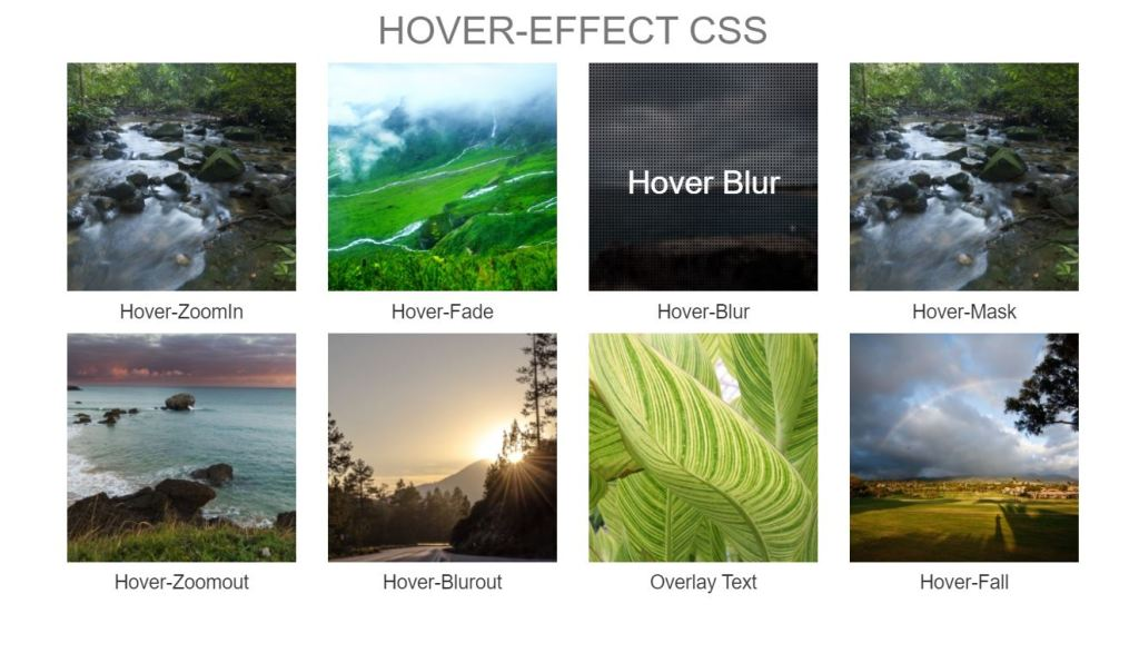Bootstrap image hover zoom effect