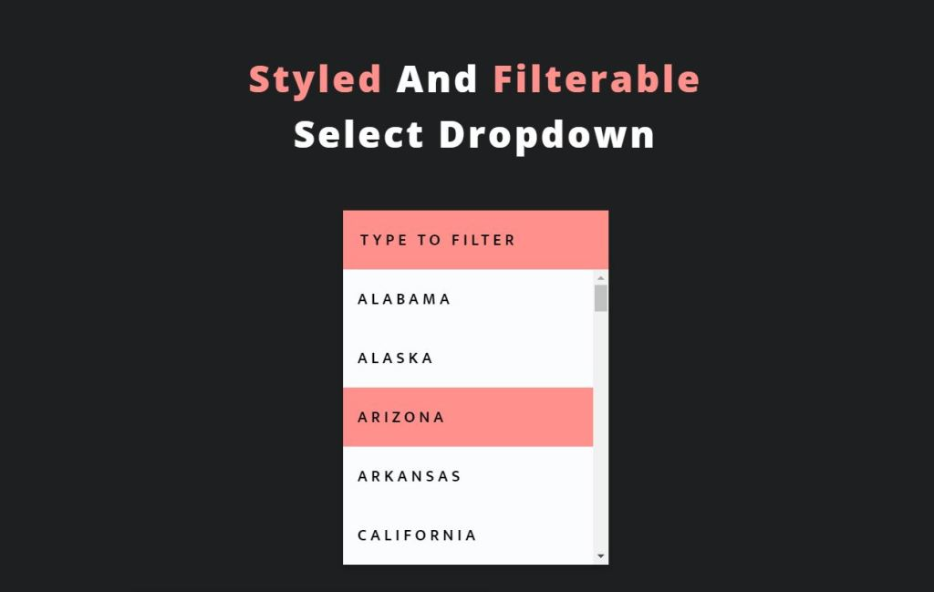Styled and Filtered JavaScript/JS Select Box example