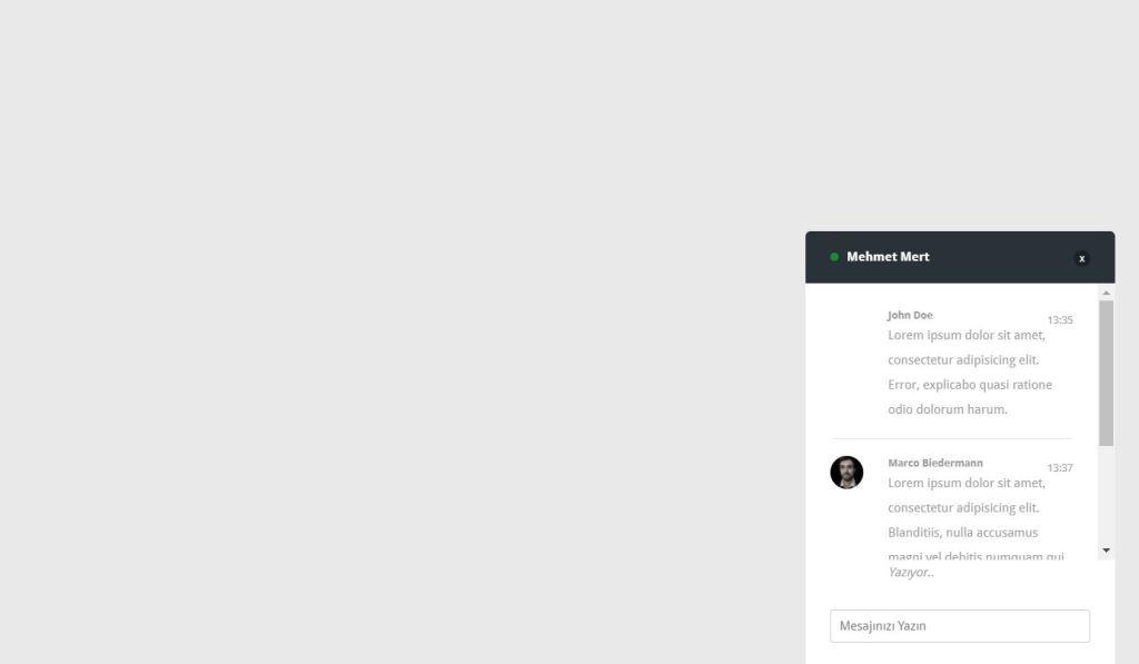 Beautiful JavaScript/JS Chat Box