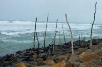 Les pilonnes de pêche en bois (stilt fishing), vides