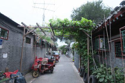 Vue d'un hutong
