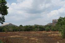 Vue sur les deux rochers de Sirigiya (Lion's rock à droite, Pirudangala à gauche)
