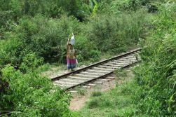 Cueilleuse de thé sur les rails de chemin de fer