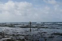 Les herbes vertes rendent la marche sur les récifs plus facile