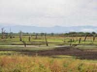 Paysages d'Udawalawe