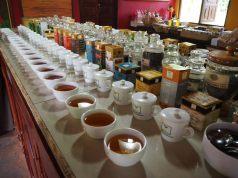 Dégustation de thés : il y en avait 40 sortes ! Du thé blanc au thé fumé (lapsang souchong), en passant par divers mélanges, dont un mélange au brandy !
