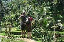 Les deux frangins aux rizières de Tegalalang