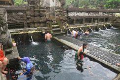 Les piscines d'eau sacrée du temple de Tirta Empul (ici la deuxième piscine, sur la droite)