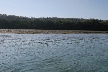Premières vues sur Nusa Lembongan et sa mangrove