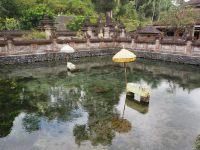 Bassin d'où émergent les sources sacrées (avec des reliques présentes dans le bassin)