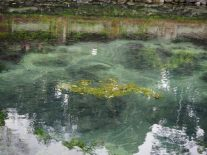 """Sur le fond du bassin, le sable noir semble """"bouillir"""": c'est le point de sortie des sources"""