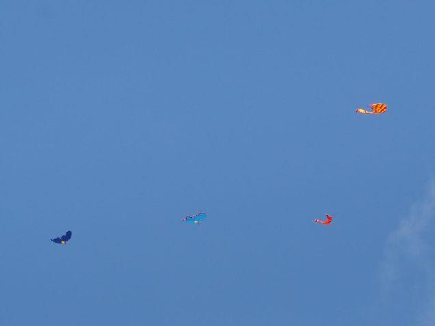 Cerfs-volants dans le ciel de Kuta