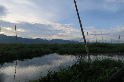 Vue sur les jardins flottants du lac Inle