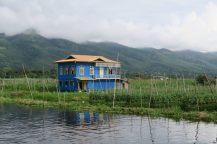 Une maison sur pilotis entourés de jardins flottant