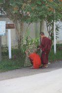 Des moines préparant la ville de Nyaung Shwe pour l'arrivée de la procession du festival Phaung Daw Oo
