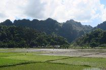 Vue sur les rizières et les collines de Hpa-An depuis le village de Takana