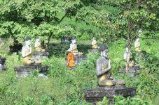 """Un moine entretien le site de """"Buddha valley"""""""