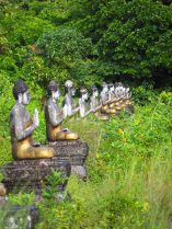 "Une allée de Buddha à la ""Buddha Valley"""
