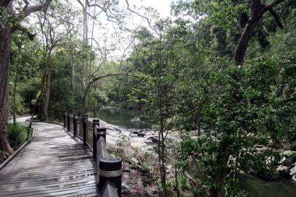 """Sur les rives de """"Broken river"""", à la recherche des """"platypus"""""""