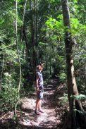 Julien admire la forêt