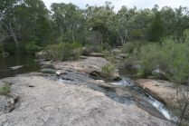 Dans le parc de Girraween