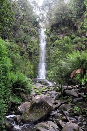 Les Erskine Falls, les cascades les plus hautes et les plus populaires de la région de Otway.