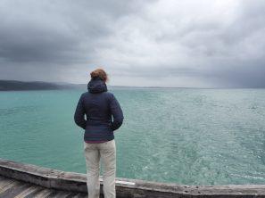 Contemplation dans le vent