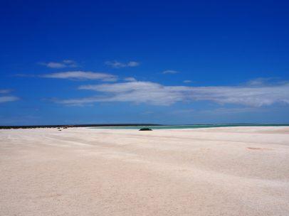 L'énorme plage de shell beach, entièrement constituée de coquillages !
