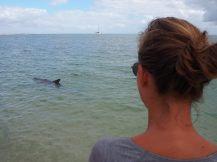 Elise observe un dauphin