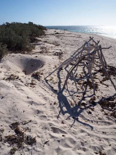 Encore une trace de ponte de Tortue sur la plage de South Mandu, Cape Range National Park