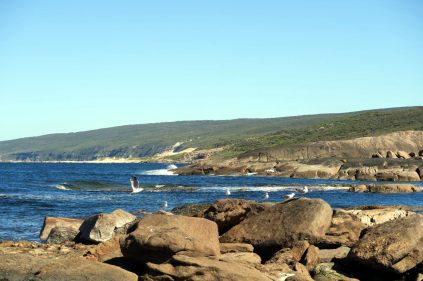 A Cape Leeuwin