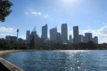 La skyline de Sydney depuis le jardin botanique