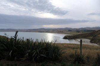 La réserve du phare Katiki
