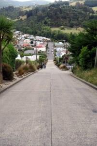 """La rue """"la plus pentue du monde"""" vue d'en haut"""