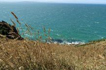 Vue depuis le haut de Nugget Point