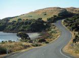 Sur la route de Curio Bay