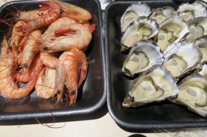 Crevettes et huîtres de Port Macquarie