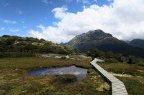 """Vue sur l'écosystème """"alpine wetland"""" au Key Summit"""