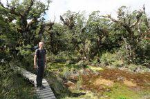 Julien dans la végétation particulière du Key Summit