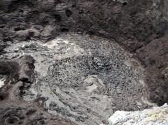 Une boue bien épaisse et bouillonnante au parc thermal de Wai-o-tapu