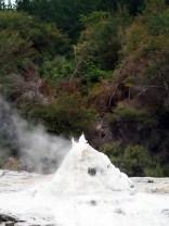 "Le geyser ""Lady Knox"", parc thermal de Wai-o-tapu. Ca mousse !"
