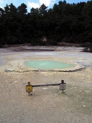 "Le ""frying pan flat"" et son ""Oyster pool"" au parc thermal de Wai-o-tapu"