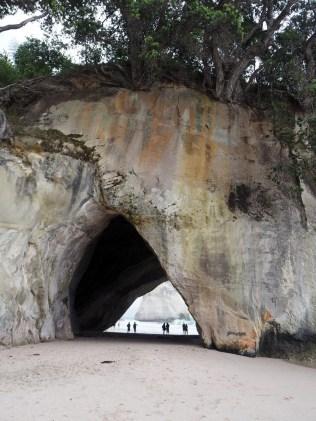 La grande arche de Cathedral cove (Coromandel)
